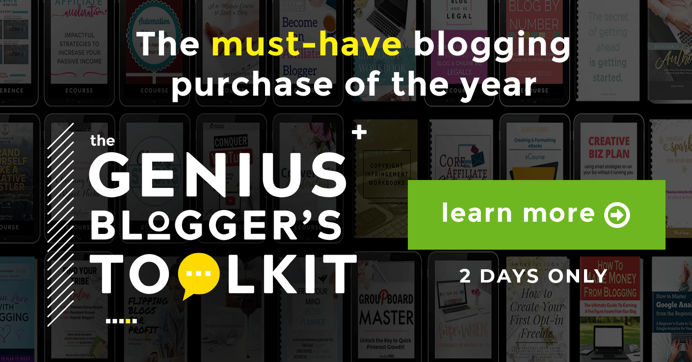 Genius blogger's toolkit flash sale b2